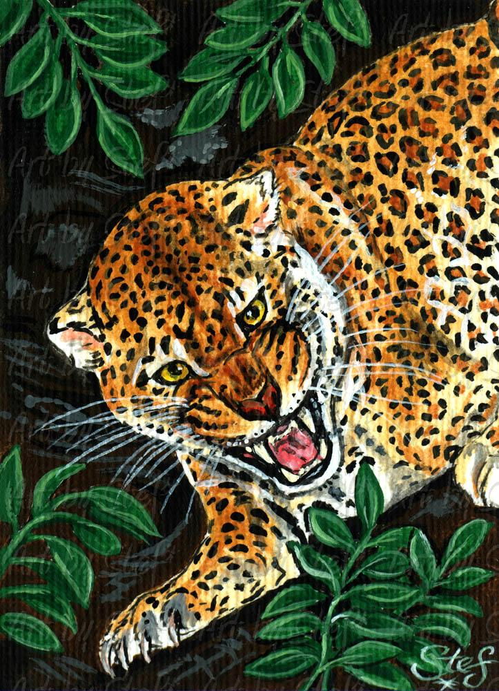 Other Animals; Big Five Series - Leopard; Acrylic ACEO; Stef