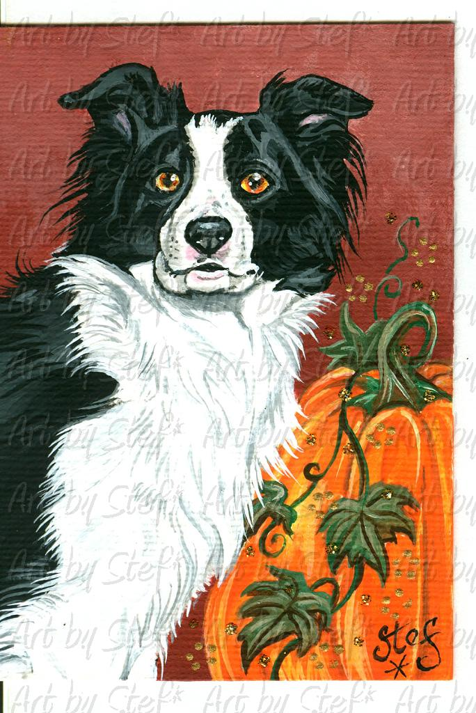 Other Animals; Border Collie; Acrylic ACEO; Stef