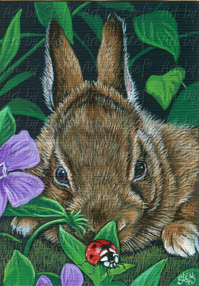 Other Animals; Bunny's Discovery; ACEO Painting; Stef