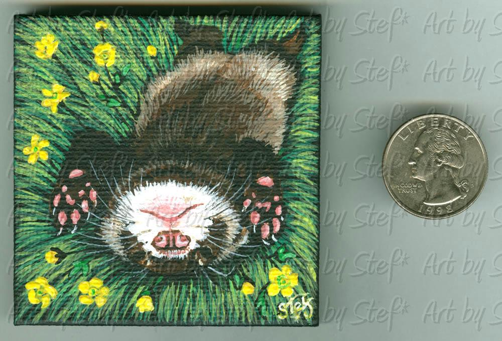"Ferrets; Buttercup Baby; Acrylic on 2.75"" square stretched canvas; Stef"