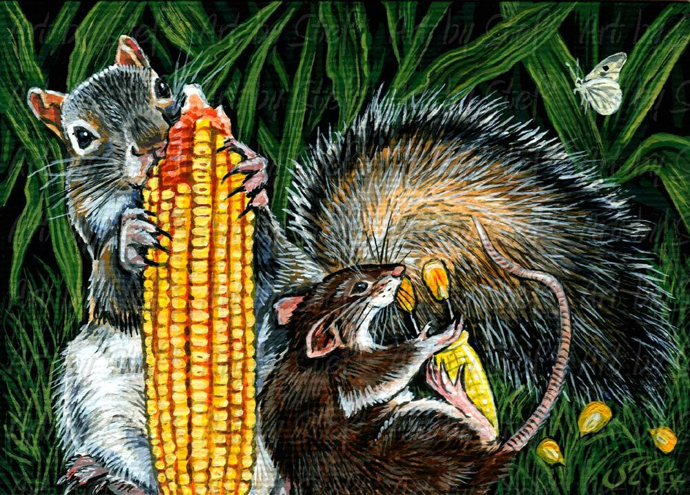 Whimsical; Corn Nuts; ACEO; Stef