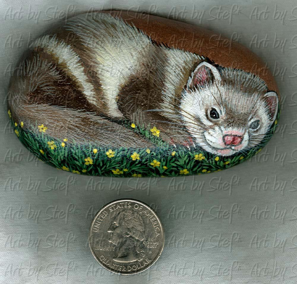 Collectables; Ferret Buttercups Stone; Handpainted Rock; Stef