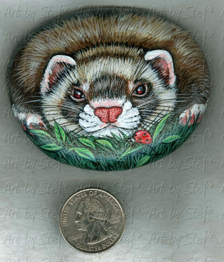 Collectables; Ferret Ladybug Stone; Handpainted Rock; Stef