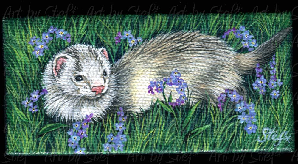 Ferrets; Forget Me Not Field; Miniature painting; Stef