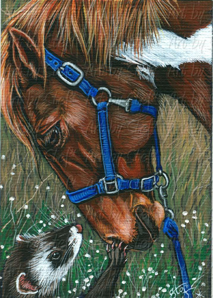 Other Animals; I Can Has Pony Ride; Acrylic ACEO; Stef