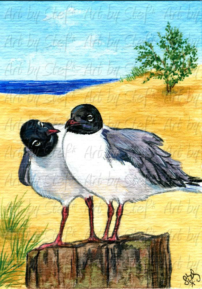 Other Animals; I Like The Way You Squawk; ACEO; Stef
