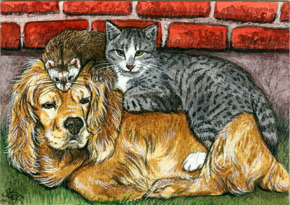 Other Animals; Lean on Me; ACEO; Stef