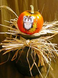 Collectables; Mini Everlast Pumpkin - Bib Ferret; Handpainted Polyfoam Pumpkin; Stef