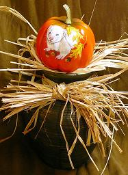 Collectables; Mini Everlast Pumpkin - White Ferret; Handpainted Polyfoam Pumpkin; Stef