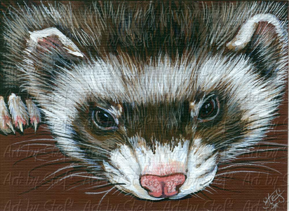 Ferrets; Miss You; Acrylic ACEO; Stef