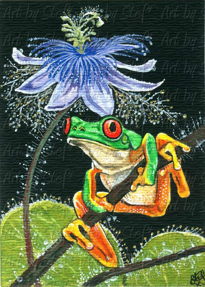 Other Animals; Passionate Frog; ACEO; Stef
