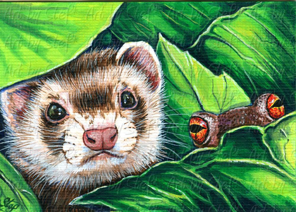 Ferrets; Peepers; Acrylic ACEO; Stef