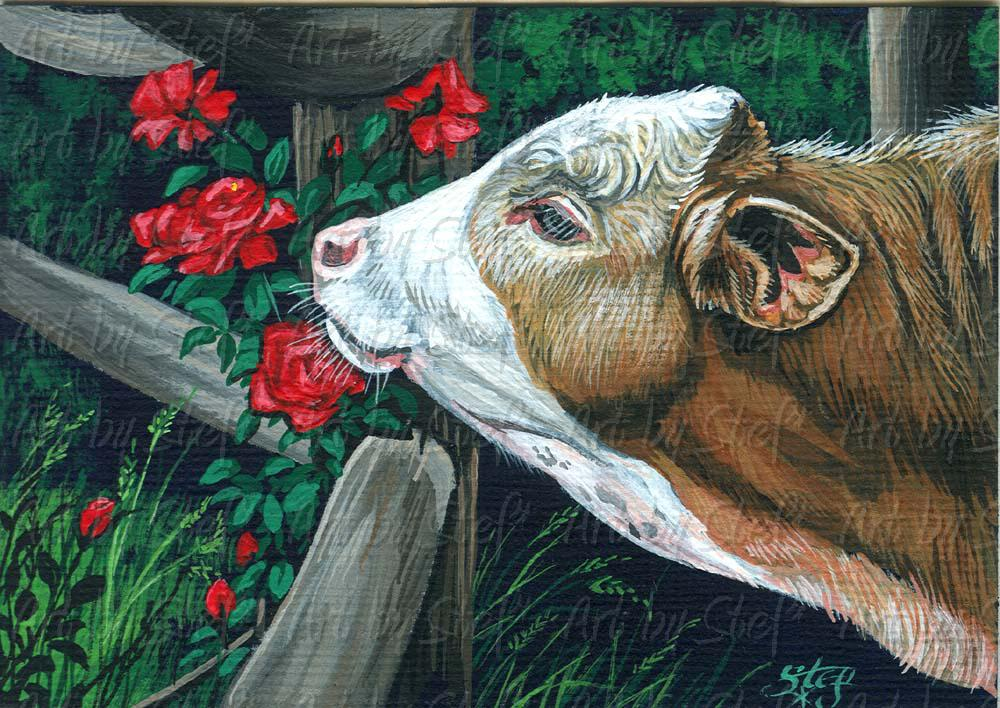 Other Animals; Rosey; Acrylic ACEO; Stef