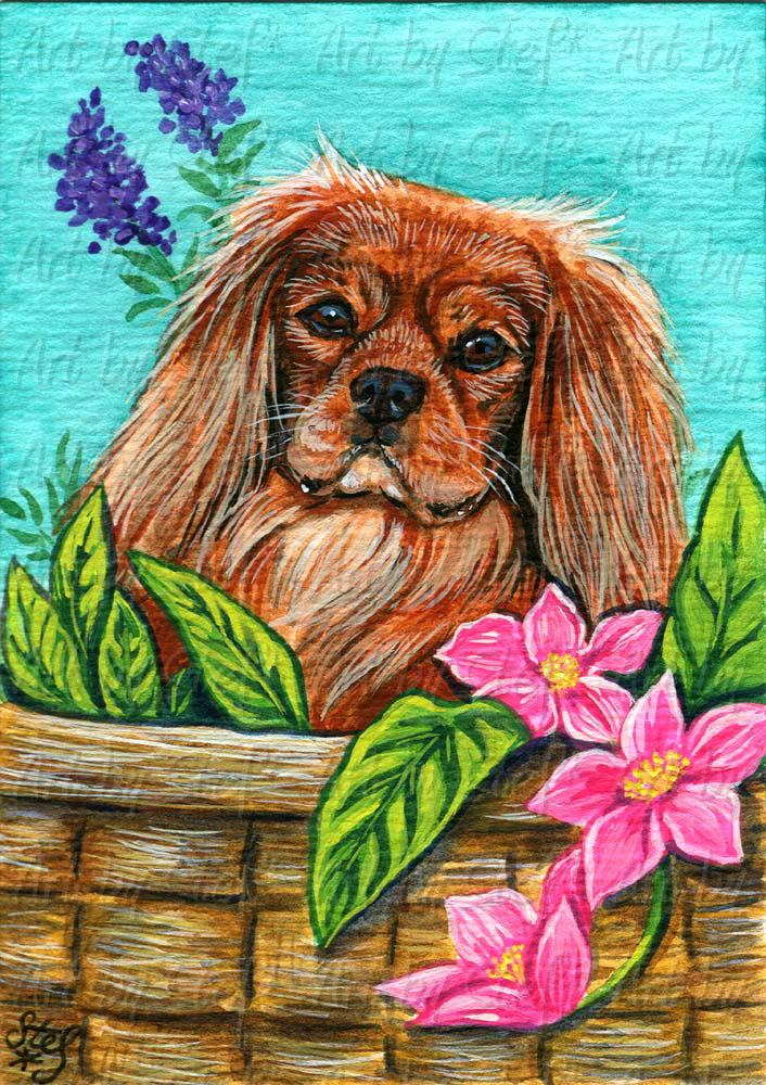 Other Animals; Ruby In A Basket; Acrylic ACEO; Stef