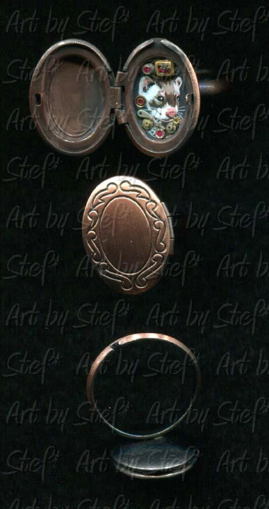 Collectables; Steampunk Locket Ring A; Handpainted Locket Ring; Stef