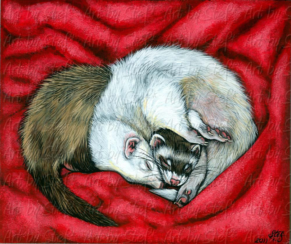 Ferrets; SUGAR PLUM DREAMS; Acrylic on Masonite Painting; Stef
