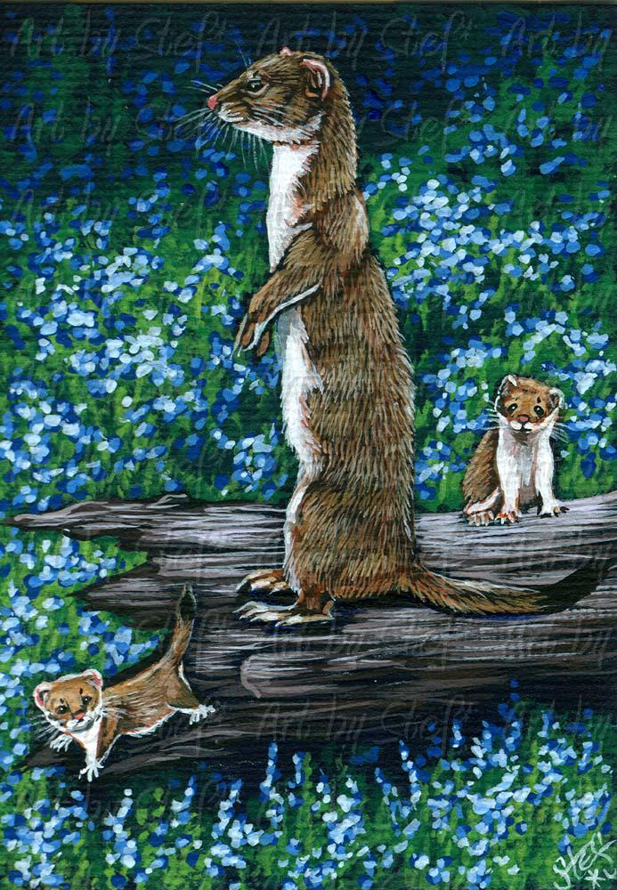 Other Animals; Watch Tower; Acrylic ACEO; Stef