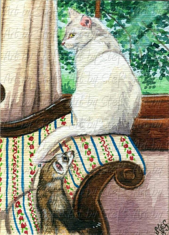 Other Animals; White Cat and Ferret; ACEO; Stef